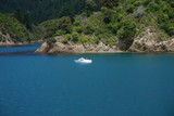 Boating in Marlborough Sounds