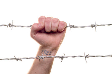 fist & barbed wire