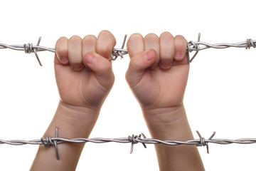 child hand on barbed wire