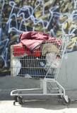 Homeless Shopping Cart poster