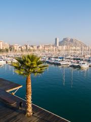 Beautiful harbor in Alicante