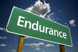 Endurance Road Sign poster