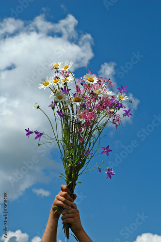 Bouquet of field flowers in hands of the child.