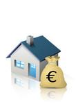 Budget immobilier en euro (reflet) poster