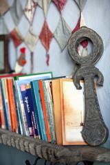 Bookshelf with travel books and novels