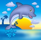 Cute dolphin with sunset-