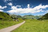 Fototapety chemin dans les alpes suisses