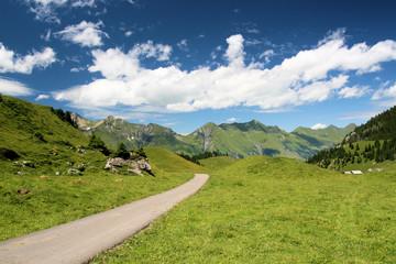 chemin dans les alpes suisses