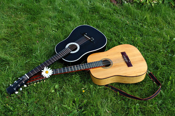 12-string and 6-string guitars on a green lawn after a concert