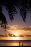 jogging courir sport effort exotisme île cocotier vacances santé poster