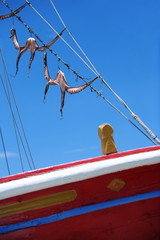 Octopus hanging to dry on boat