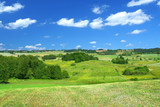 summer landscape with cumulus clouds poster