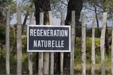 régénération naturelle poster