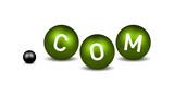 dot Com Domain Name poster