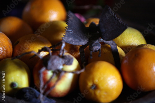 Closeup of oranges with decorative bugs