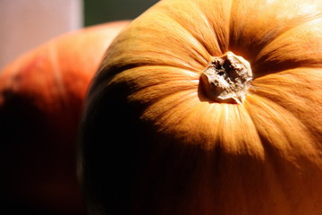 Closeup of pumpkins