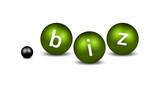 dot BIZ Domain Name poster