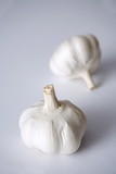 Garlic bulbs on white background