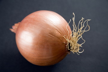 Red onion on black background