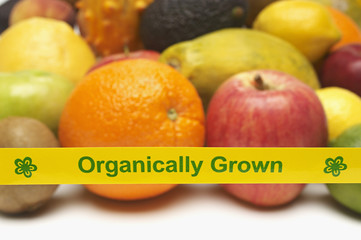 Organically grown fruits