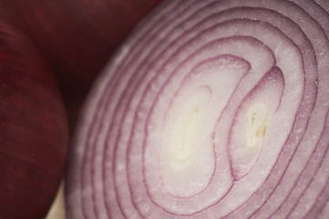 Cross section of red onion, close-up