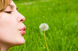 young girl blowing on the dandelion