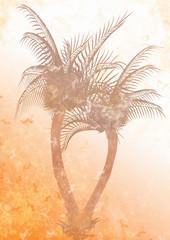 sfondo palme