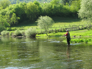 Fly-fishing on Ribnik