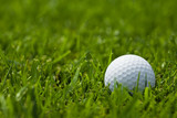 white golf ball on fairway close up poster