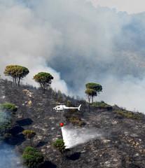 elicottero antincendio in azione