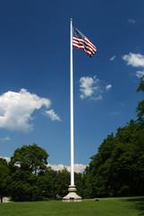 flagpole in field