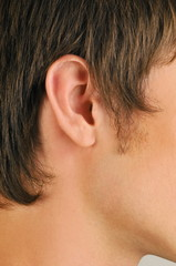 Young male adult's ear close up