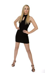 Attractive Woman Wearing Little Black Dress
