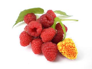 unique raspberry