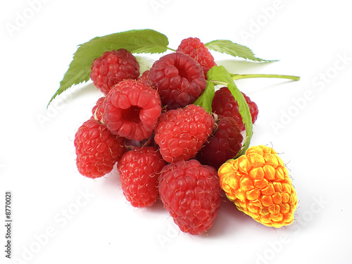 unique raspberry
