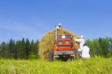 Haymaking in Siberia 8