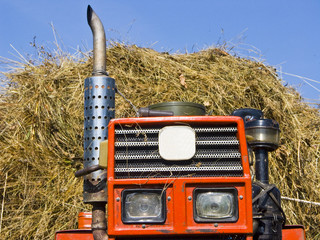 Haymaking in Siberia 6