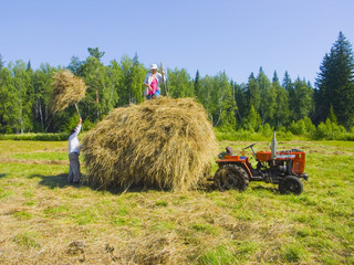Haymaking in Siberia 15