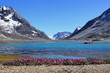 Symmetric lake-mountain-flower picture
