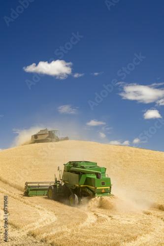 Leinwandbild Motiv Two Combines Harvesting Wheat
