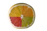 Merged citrus fruits poster