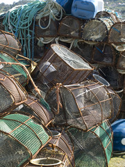 Traps for shellfish