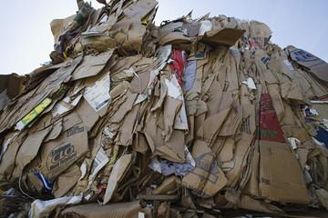 Pile of cardboard