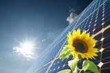 Fototapety Solarenergie
