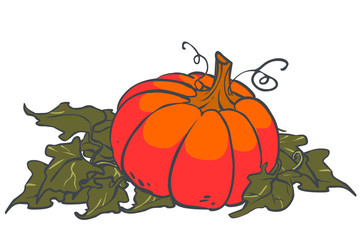 Vector cartoon Halloween pumpkin