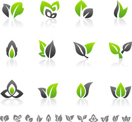Set of 12 abstract green leaf icons and graphics