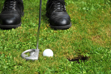Golf hole in one by stick