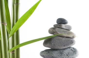 tranquil view of bamboo with a stack of stones
