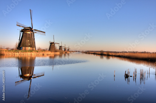 Line of Windmills Poster