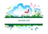Fototapety summer meadow banner